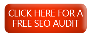 FREE-SEO-AUDIT, Search engine optimization in Nigeria