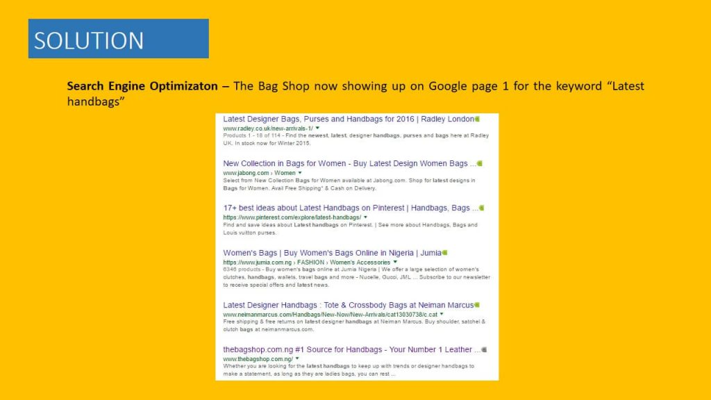 the bag shop seo campaign (2)